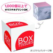 キューブBOX 80W